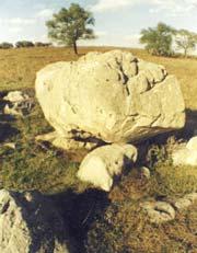 Конь-камень на реке Красивая Меча